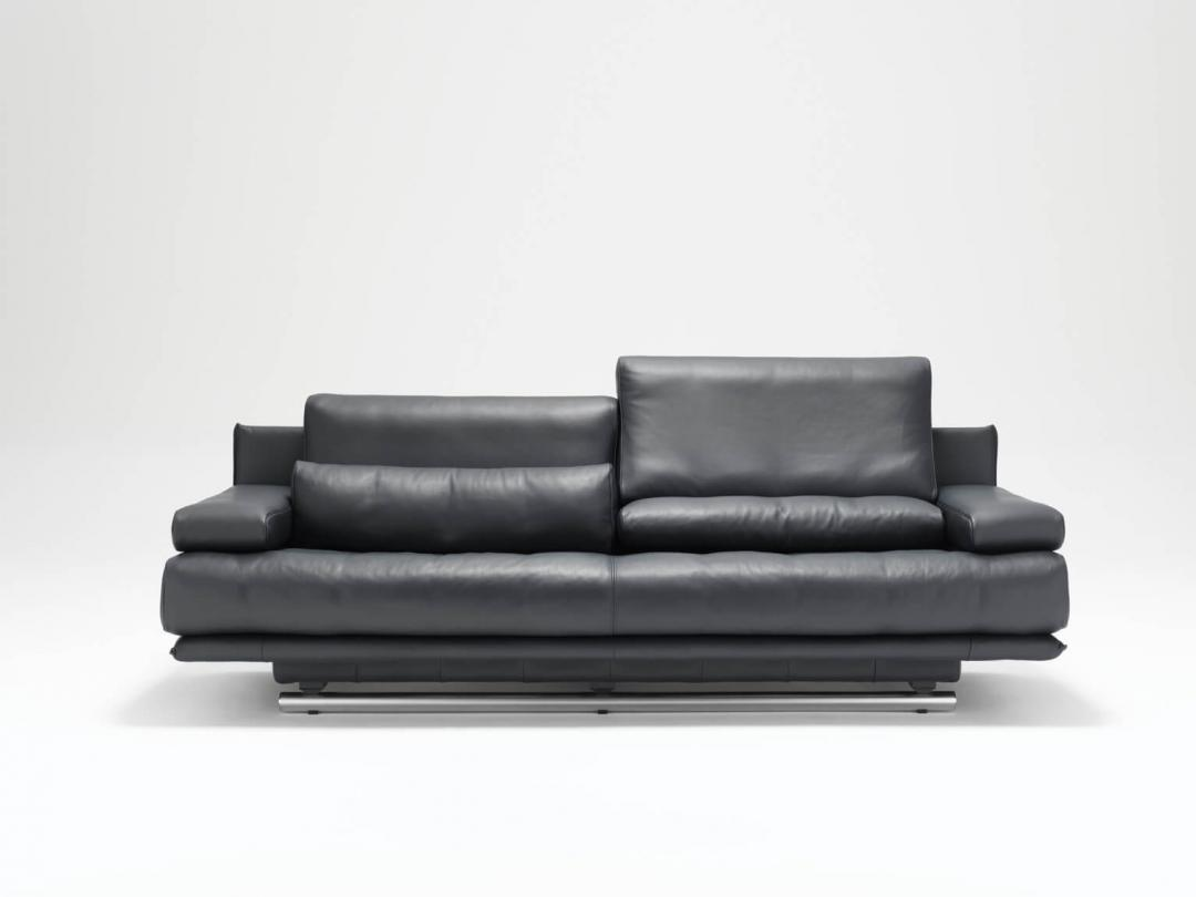 rolf benz 6500 danese lealty. Black Bedroom Furniture Sets. Home Design Ideas