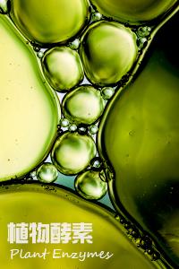 植物發酵-安全更有效!