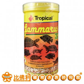 TROPICAL德比克  高蛋白乾蝦