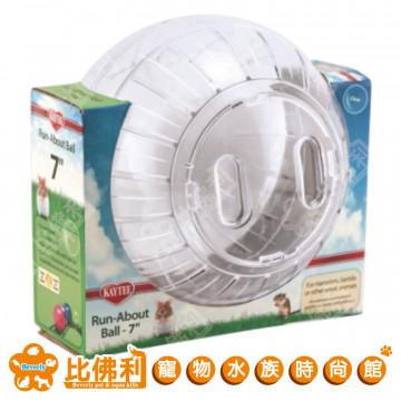 KAYTEE 7吋寵物健身球-透明