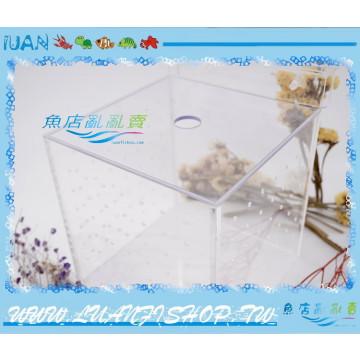 LUANFISHOP高透明壓克力飼育箱/產卵箱/繁殖箱13cm(缸內型)開放缸.邊條缸