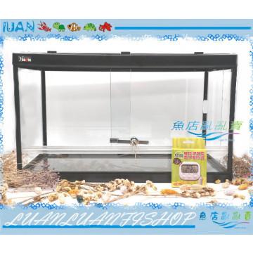 HIROTA玻璃爬蟲箱RP-600型(60*30*36CM)兩棲.寵物缸+溫濕度電子器