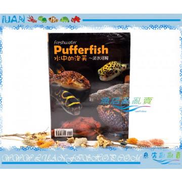 TMBIOP德河威智ufferfish水中的泡芙~淡水河魨(工具書)娃娃.河豚.狗頭