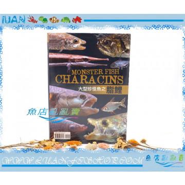 TMBIOP德河威智MONSTER FISH CHARACINS大型珍怪魚之脂鯉(大型魚)