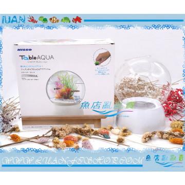 NISSO日本Table AQUA Stand桌上景觀生態缸W15×D15×H20cm玻璃魚缸