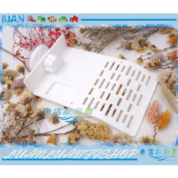 白色強塑膠斜坡水龜固定式浮台/曬台(中)附飼料盆18.5X12cm(兩棲烏龜島)強力真空吸盤