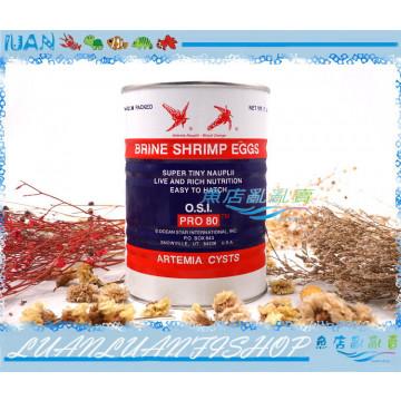 美國進口Inve貓頭鷹-頂級3A乾燥特級99%豐年蝦卵425G(高孵化率)特A級卵