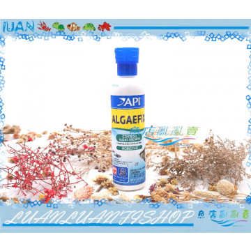 D165美國API魚博士ALGAEFIX藻類清除劑237ml除藻劑(青苔.絲藻.黑毛藻)