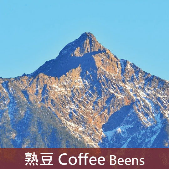 台灣 阿里山 小農契作 日曬(淺焙2)