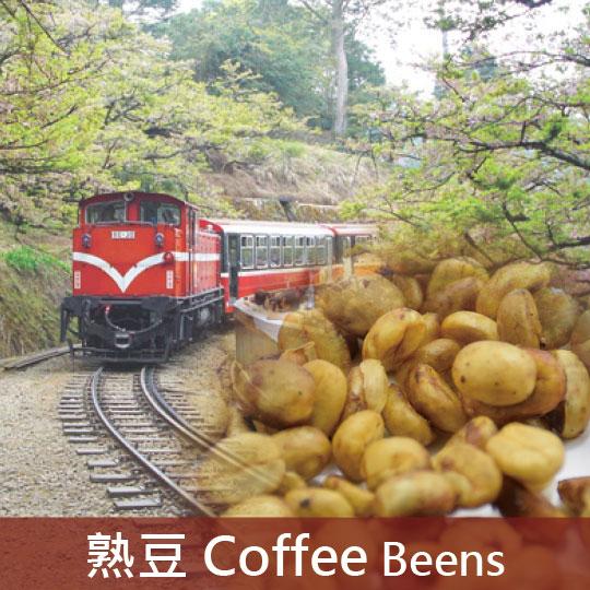 台灣 阿里山 小農契作 蜜處理(淺焙2)