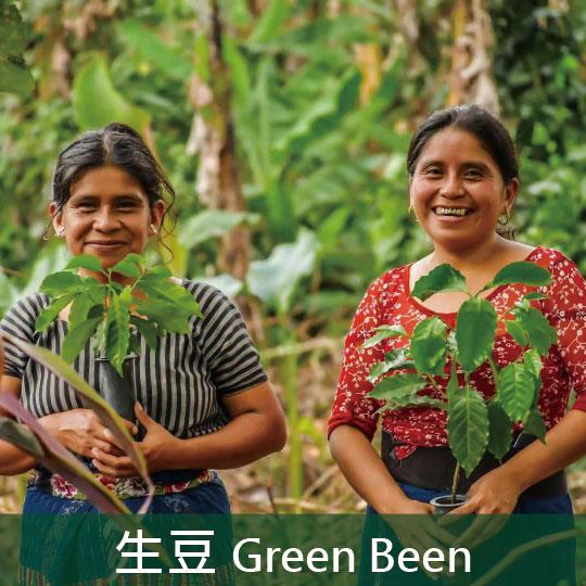 【生豆】瓜地馬拉 阿提特蘭 女性生產者合作社