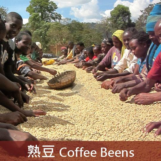 衣索比亞 水洗耶加雪菲 G1 非洲之王 果丁丁處理廠(淺焙1號)