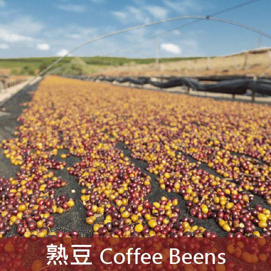 巴西 伊帕內瑪莊園 頂級金系列 C27 紅葡萄(中焙3)