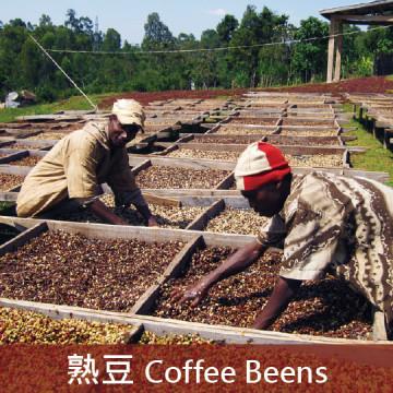 衣索比亞 日曬耶加雪菲 G1 沃卡村 班可 果丁丁處理廠 草莓甜心 (極淺焙1)