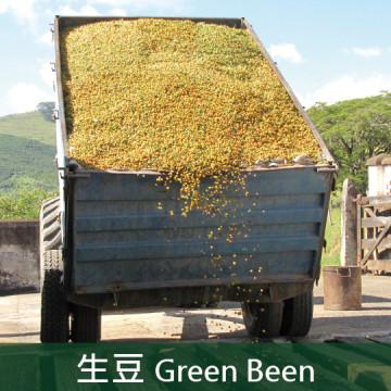 【生豆】巴西 南米納斯 河谷農場