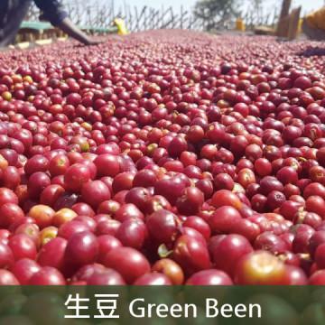 【生豆】衣索比亞 日曬古吉G1 罕貝拉 可蜜拉山茶花 2019冠軍莊園