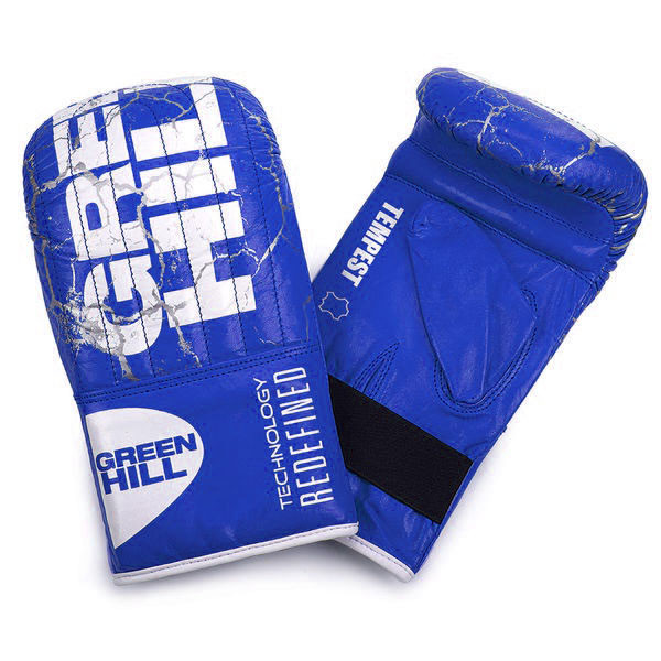 GREENHILL 風暴系列 專業沙袋拳套 - 藍 - PMT-2112