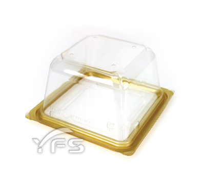 VF-AP140方形蔬果盒-金(有孔)