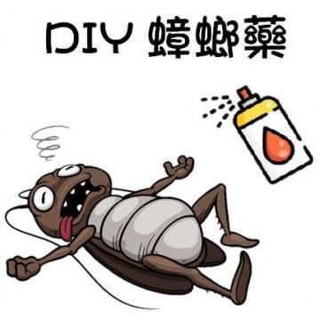 環保蟑螂藥DIY配方
