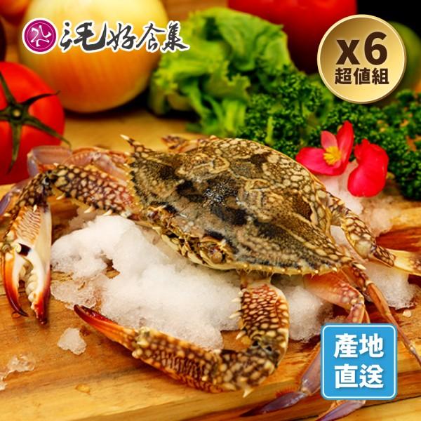 藍蟹(不包冰)單隻包*6組