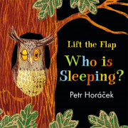 Who Is Sleeping? (A Lift the Flap Book)