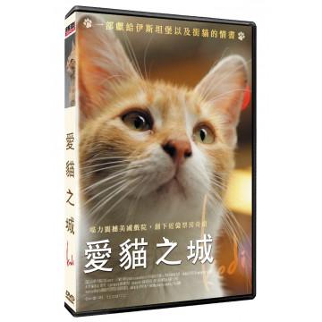 愛貓之城DVD