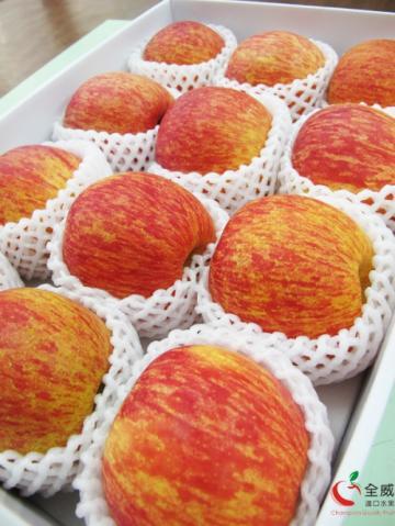 智利蘋果M號(12入裝/盒)