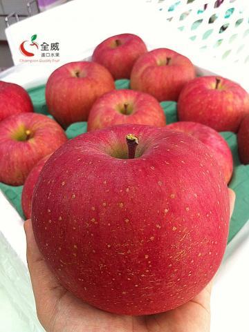 最強!日本特選SXL號富士蜜蘋果(22入)
