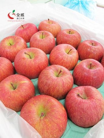 最強!日本M號富士蜜蘋果(32入/整箱)