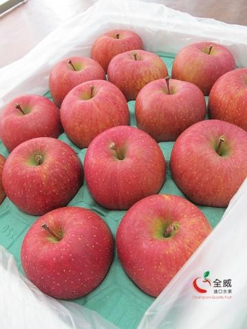 最強!日本L號富士蜜蘋果(28入/整箱)