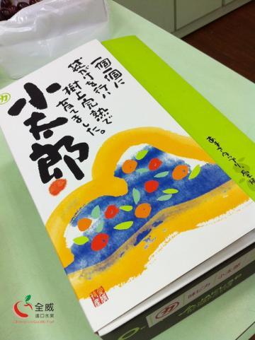 日本第一,最強!日本小太郎蜜柑(2kg裝)