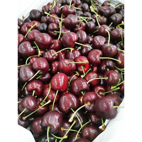 華盛頓櫻桃8.5row(5kg/原裝箱)