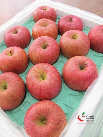 最強!日本XL號富士蜜蘋果(26入/整箱)