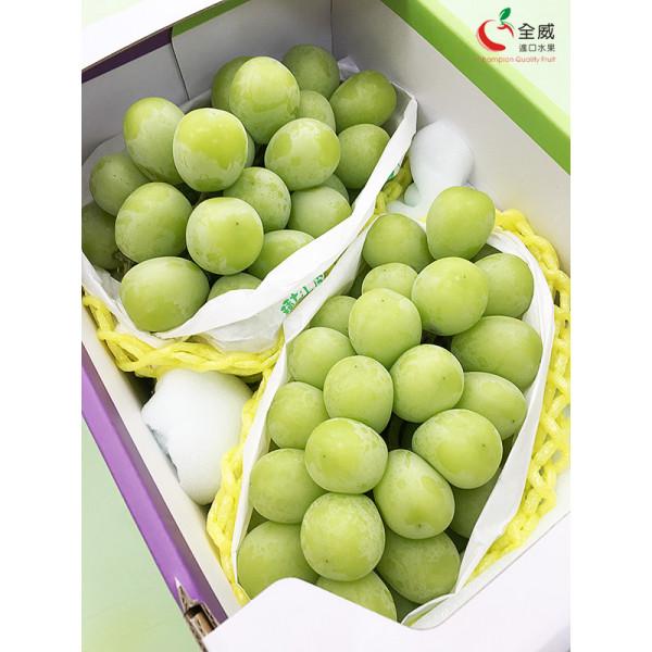 日本香印翠玉葡萄XL號(2房/盒)