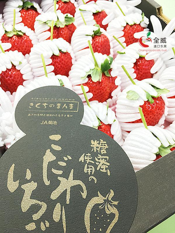 日本熊本菊池糖蜜草莓(21~30入)