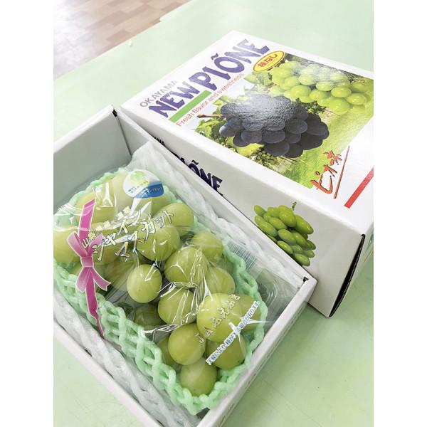 日本溫室香印翠玉葡萄(1房/盒)