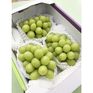 日本山梨香印翠玉葡萄M號(3房/盒)