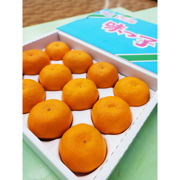 日本長崎西海蜜柑(12入裝),日本知名蜜柑精緻禮盒,時尚大方的選擇