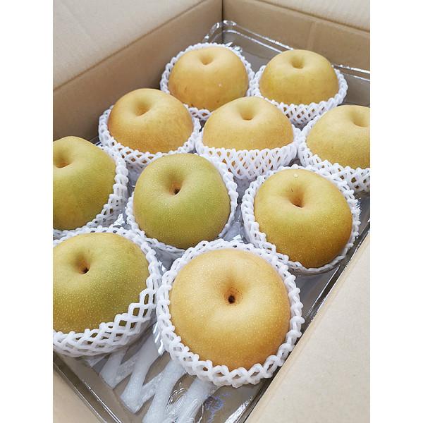 最強!日本鳥取新甘泉梨(10~12入/箱),日本新品種,超越南水梨甜度與新高梨水份的驚艷水梨