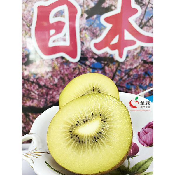 日本香川縣雞蛋黃金奇異果(9入/箱)