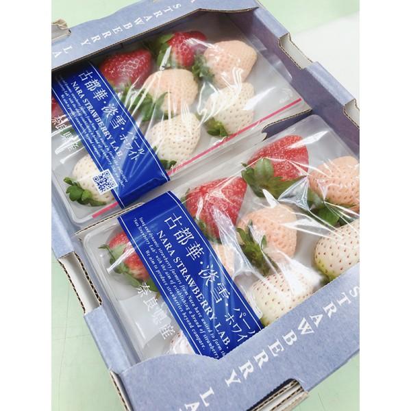 日本古都華淡雪三色草莓(2小盒/盒(每小盒約15顆))