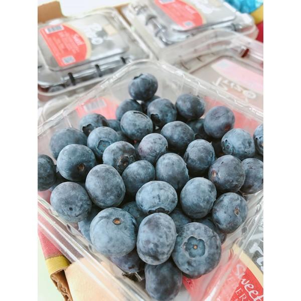 智利藍莓(12盒/箱)