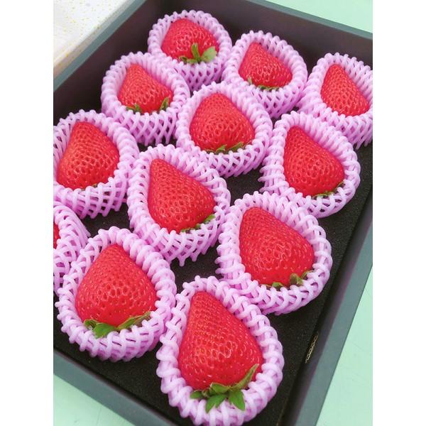 日本高知草莓(9~12入)