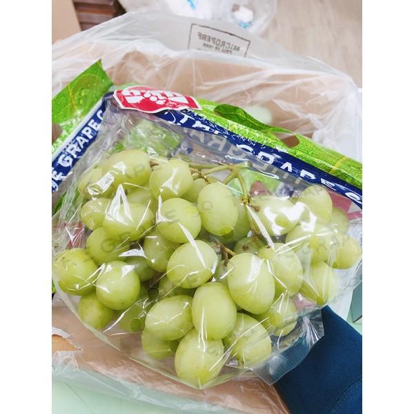 南非特甜綠葡萄(4.5kg/箱)