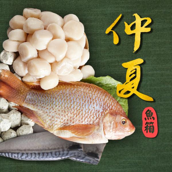 【Hi-Q fresh】仲夏魚箱