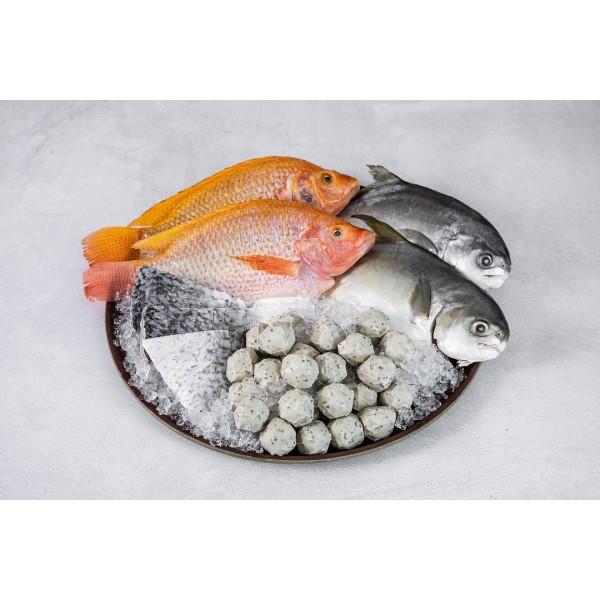 【Hi-Q fresh】牛運亨通魚箱