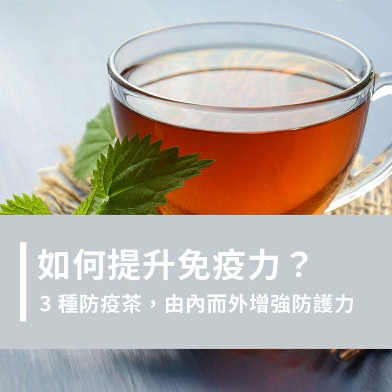 如何有效提升免疫力?除了日常飲食外,加碼 3 種防疫茶讓你輕鬆增強內外防護力