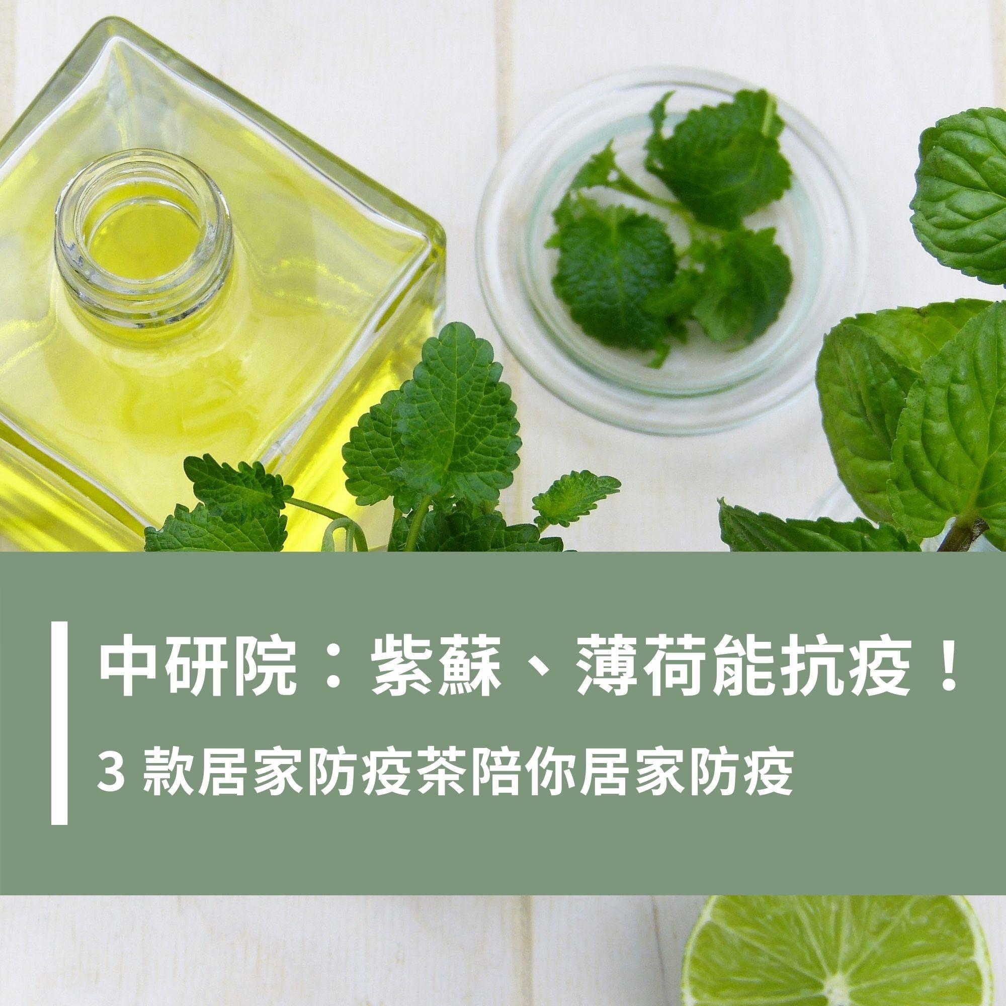 中研院證實:紫蘇、薄荷能抗疫!3 款居家防疫茶陪你居家防疫