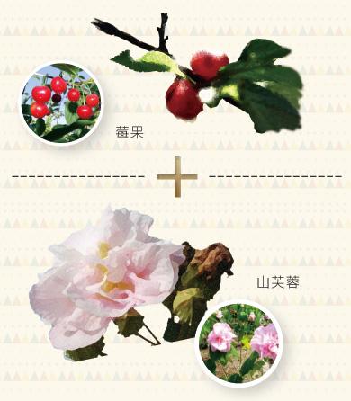 Shangfujung KGF 天然活膚修護因子、細胞生長因子、山芙蓉、莓果、紅石榴、海洋深層水、鎖住歲月痕跡、延緩肌齡、緊顏煥采、提高抗氧化、維持青春活力