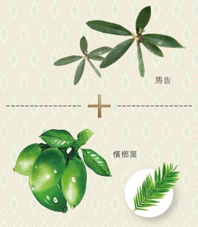 檳榔葉、馬告、精胺酸、收斂毛孔、深層清潔、控油補水、祛痘去角質